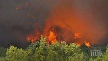 Пожари избухнаха в Хасковско и Варненско