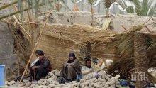 Поне 30 души са загинали при силна експлозия в гражданска болница в Пакистан