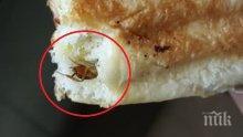 Хлебарка в закуската! Бонус протеин от пекарната