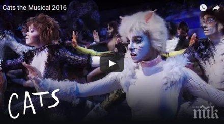 """За ценители: Оригиналният мюзикъл """"Котките"""" за първи път в България"""