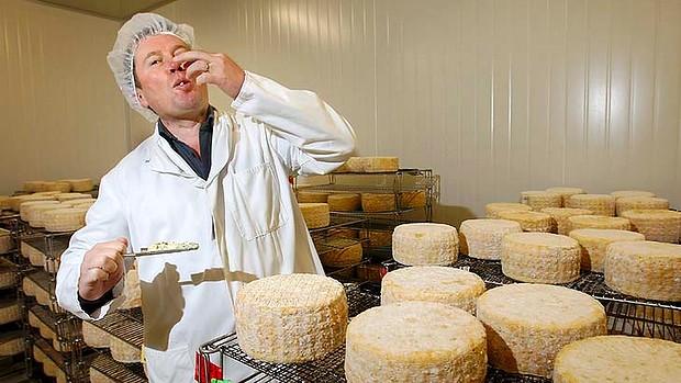 Кое е най-хубавото сирене