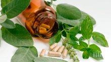 Хомеопатия или антибиотици да изберете