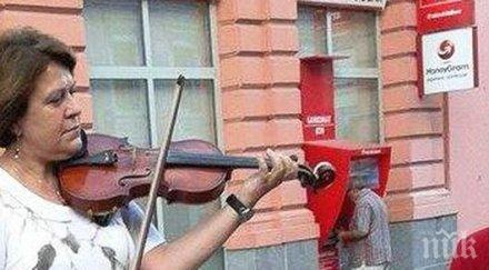 Куче слуша в захлас цигулката на Татяна Дончева на Главната в Пловдив