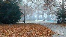 Без слънце днес! Утрото започва с мъгли и ръмежи, денят ще е облачен