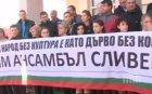 Драма в Сливен! Танцьори от ансамбъла за народни танци в града плачат заради орязани заплати
