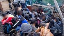 Две групи мигранти са заловени на границата при Лозенград