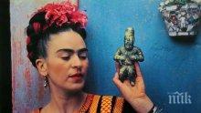 Картина на Фрида Кало за 2 млн. долара отива на търг