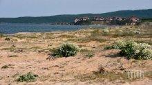 МИРИШЕ НА ДАЛАВЕРА! Екоминистерството намали с 50 декара защитена местност край Созопол