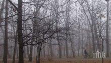 Прогнозата: Облаци и мъгли, температурите скачат до 13 градуса