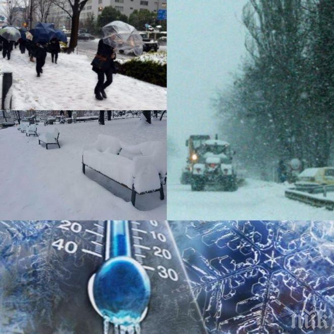 ЗАДАВА СЕ НЕВИЖДАН СТУД! Цялата идна седмица ще е като в арктическа зима, живакът пада до -29 градуса (ВИДЕО)