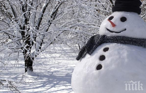 МРАЧНА ПРОГНОЗА! Лошото време остава до 22 януари