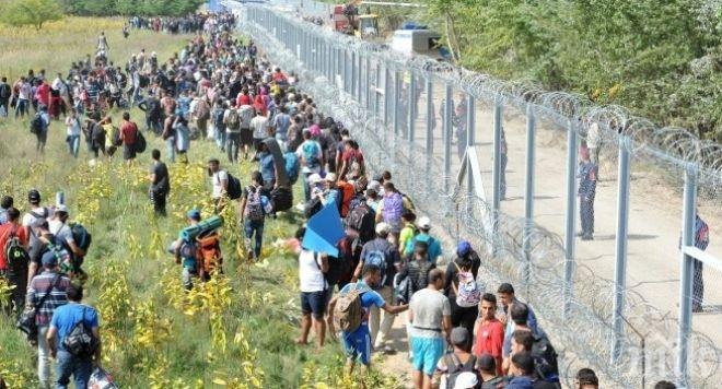 Словения се опълчи на Брюксел, прие по-строги правила за имиграция