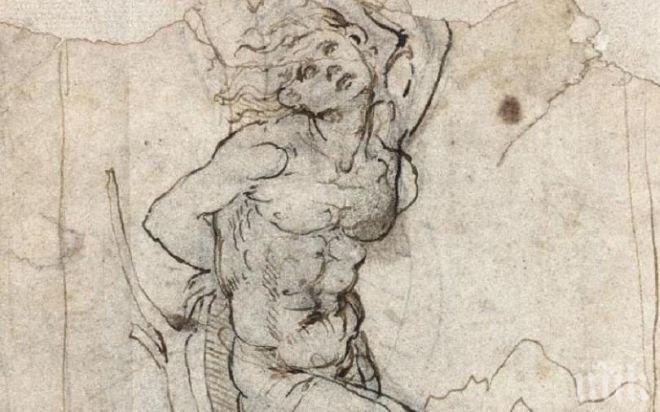 Франция търси 15 млн. евро, за да си върне уникална скица на Да Винчи