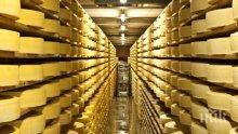 ПАРТИЗАНСКА АКЦИЯ В КРЕСНА! Апаши отмъкнаха 80 кила кашкавал, 70 кила сирене и машини  от ферма