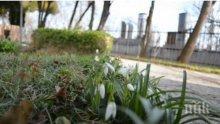 Пролет! Жегата продължава и днес! Живакът скача до 22 градуса