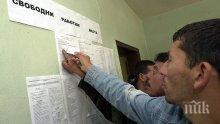 СТАТИСТИКА: Над 1200 гастарбайтери с тлъсти обезщетения за безработица