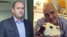 """САМО В ПИК И """"РЕТРО""""! Президентът Румен Радев: По-сам съм от овчарката на Бойко Борисов в Банкя!"""