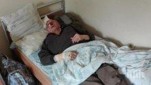 Ужас! Кучета нахапаха жестоко пенсионер в Хасково