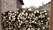 Провериха десетки къщи в Добричко за незаконна дървесина</p><p> </p><p>