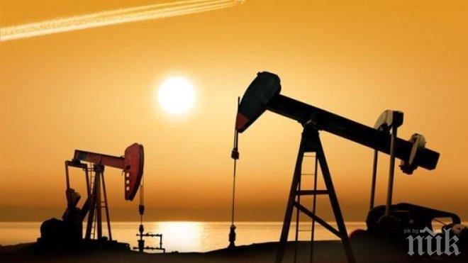 Цената на петрола скочи на фона на очакванията ОПЕК да продължи съкращаването на добива