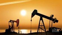 Руският енергиен министър: Запасите на петрол по света постепенно намаляват