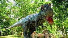 Откритие! Намериха следи от гигантски динозаври