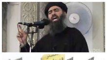 """Само в ПИК и """"Ретро""""! Хиляди англичани и французи се бият за """"Ислямска държава"""""""