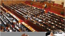 Криза в парламента! Кой ще ни кове законите - юристите на изчезване в 44-ото Народно събрание, зайците повече от опитните депутати