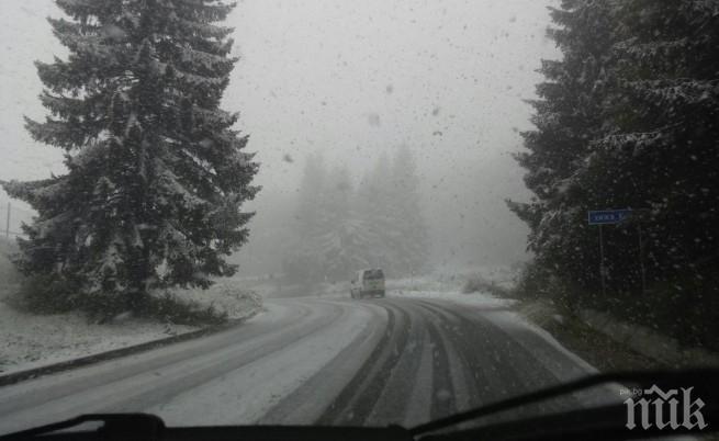 Сняг вали в Монтанско, проходът Петрохан е проходим
