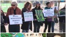 """Зелен рекет над Стара Загора! Хората на Тома Белев подклаждат протестите за """"Бедечка"""""""