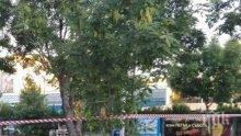 УЖАС! Мъж се обеси в средата на кръстовище в Пловдив (СНИМКА)