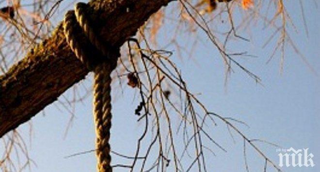 УЖАС! Мъж увисна на дърво насред пловдивска улица