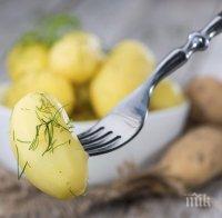 Отървете се от комплексите и наднорменото тегло с картофена диета