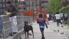 Този мъж вижда изгубено 8 годишно момиченце и прави немислимото. 22 милиона души го видяха!