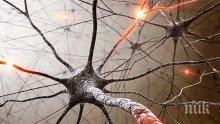 Стресът води до множествена склероза, болестта засяга предимно млади хора