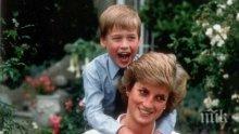 Принцовете Уилям и Хари участват във филми за лейди Даяна, искат да защитят името си