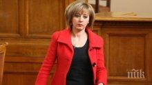 Пълно мнозинство в подкрепа на Мая Манолова