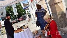 Моцарт и кучето му посрещнаха пловдивчани в новия модерен туристически център