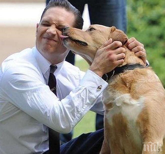 Том Харди спасява отвлечен син на политик