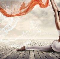 Лечение с енергии, медитация, ведическа кухня, асани за деца и възрастни - в Деня на йога в София
