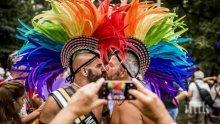 Стига вече гей изстъпления!