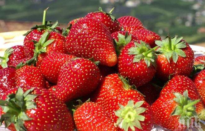 ХИТ! От какво ни лекуват ягодите