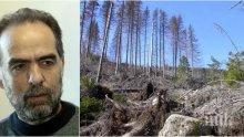 Тома Белев и зелените убиха Витоша с корояд
