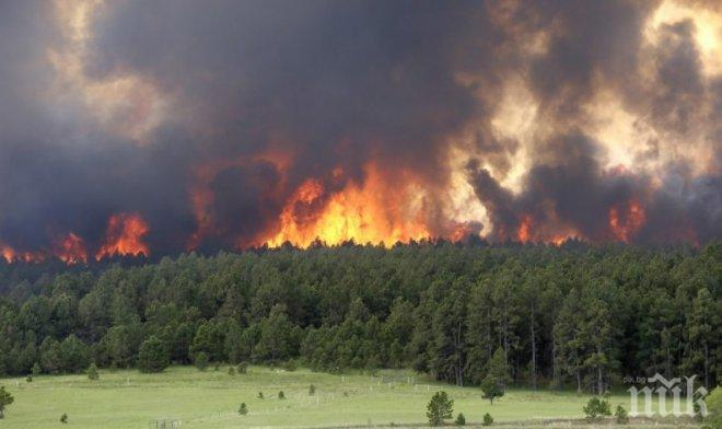От последните минути! Силен пожар в близост до Ница