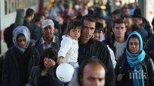 Цифрите говорят: Над 14 000 мигранти са напуснали България миналата година