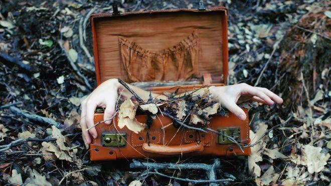 ЗЛОВЕЩА НАХОДКА! Отрязани човешки ръце открити в багажа на китаец