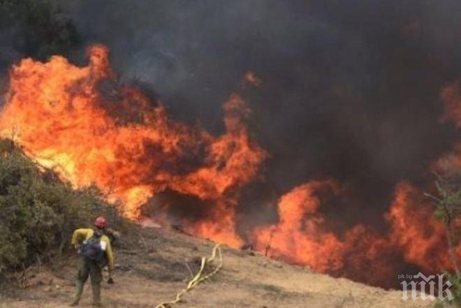 ИЗВЪНРЕДНО! Пожарът край София пламна отново, хората търсят помощ