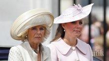 НАРОДЕН ВОТ! 2/3 от британците не искат Камила да стане кралица