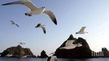 В Япония тестваха успешно електростанция, получаваща енергия от теченията на океана