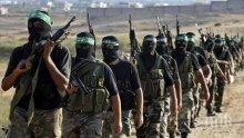 И Хизбула осъди атентата в Барселона